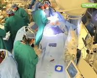 Doku ve organ bağış belgesi nedir?